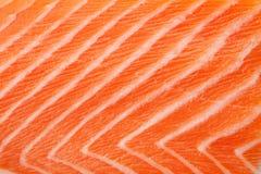 ny röd laxtextur Arkivfoto