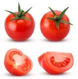 Ny röd tomat för samling med gräsplansidor som är hela, snitt i hal Fotografering för Bildbyråer