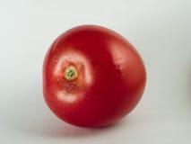 Ny röd tomat på vit Arkivfoton