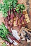 Ny rödbeta på träyttersida Ny vald organisk rödbeta Royaltyfri Foto