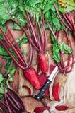 Ny rödbeta på träyttersida Ny vald organisk rödbeta Royaltyfria Bilder