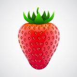 Ny realistisk jordgubbe Isolerat på vit Arkivbild