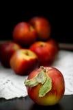 ny red för äpplen Arkivfoton
