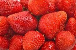 Ny söt mogen jordgubbe Royaltyfria Foton