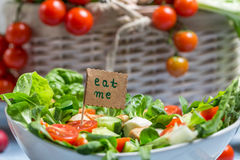 Ny sallad är ett symbol av sunt äta Fotografering för Bildbyråer