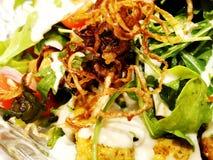 Ny sallad från grönsallatsidor av olika sorter av sallad för rucola för variationskålmorötter Arkivfoton