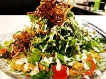 Ny sallad från grönsallatsidor av olika sorter av sallad för rucola för variationskålmorötter Arkivfoto