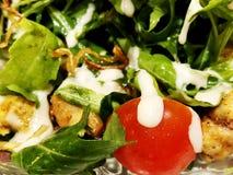 Ny sallad från grönsallatsidor av olika sorter av sallad för rucola för variationskålmorötter Fotografering för Bildbyråer