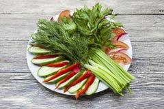 Ny sallad från lantgårdgrönsakerna Huggen av lök, tomat, gurka, persilja, koriander, dill Eco produkter utan GMO Royaltyfri Foto