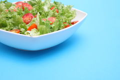 Ny sallad - grönsallat och tomater Royaltyfri Bild