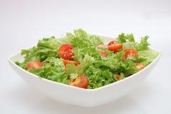 Ny sallad - grönsallat och tomater Arkivbild