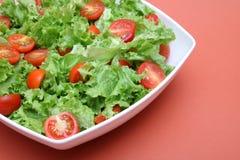 Ny sallad - grönsallat och tomater Fotografering för Bildbyråer
