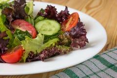 Ny sallad med blandade gräsplaner, den körsbärsröda tomaten och gurkan Royaltyfria Bilder