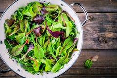 Ny sallad med blandade gräsplaner på träbakgrund Royaltyfri Bild