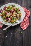Ny sallad med blandade gräsplaner, rädisan, ost och tomaten i en pl Royaltyfria Foton