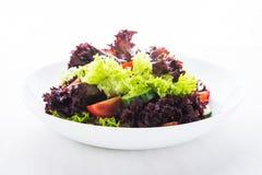 Ny sallad med grön och purpurfärgad grönsallat, tomater och gurkor på det vita träbakgrundsslutet upp Arkivbilder