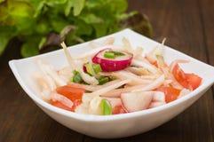 Ny sallad med kål, rädisan och tomaten spelrum med lampa Top beskådar Närbild arkivbild