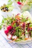 Ny sallad med kål Royaltyfri Foto