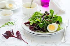 Ny sallad med rödbeta-, blandningsida-, olivolja-, ägg- och sesamfrö Arkivfoton