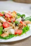 Ny sallad med sunda grönsaker Royaltyfri Foto