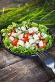 Ny sallad med tomater och gurkor. Royaltyfria Bilder