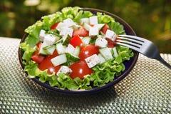 Ny sallad med tomater och gurkor Arkivbilder