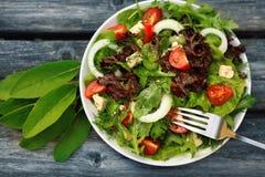 Ny sallad med tomater och gurkor Royaltyfri Fotografi