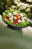 Ny sallad med tomater och gurkor. green…, Fotografering för Bildbyråer