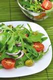 ny salladgrönsak Royaltyfri Fotografi