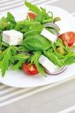 ny salladgrönsak Arkivfoto