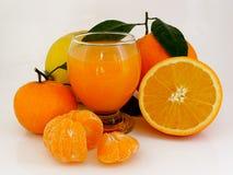 Ny sammanpressad citrus Arkivfoto