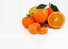 Ny sammanpressad citrus Arkivbild