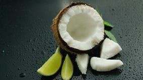 Ny sammansättning av limefrukt och kokosnöten arkivbilder
