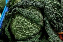 Ny savojkål på den organiska marknaden för Frarmer ` s i Europa Arkivbilder