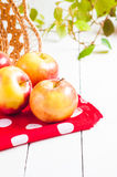 Ny skörd av äpplen Naturfruktbegrepp Royaltyfri Fotografi