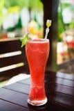 Ny skaka för sommarvattenmelon i flickahandnärbild Arkivfoton