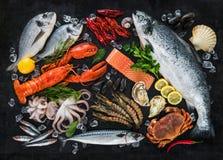 ny skaldjur för fisk royaltyfri fotografi