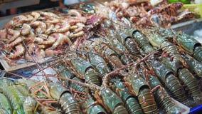 Ny skaldjur, hummer, räkor, krabbor är i isen på räknaren på nattmarknadsslutet upp stock video