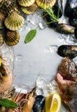 Ny skaldjur med örter och citronen på is Räkor fisken, musslor, kammusslor över stål belägger med metall bakgrund Bästa sikt, kop Arkivbilder