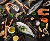 Ny skaldjur på den svarta stenen Royaltyfria Bilder