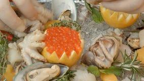 Ny skaldjur på plattan med is är klar att lagas mat av kocken Fotografering för Bildbyråer
