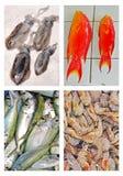 Ny skaldjur på till salu skärm royaltyfria foton