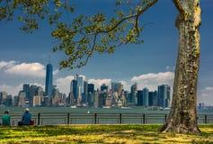 NY Skyline Royalty Free Stock Image