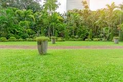 Ny slät gräsmatta för grönt gräs som en matta med växtkrukan, buske, träd i en trädgård som bygger på bakgrund, bra underhåll royaltyfri bild