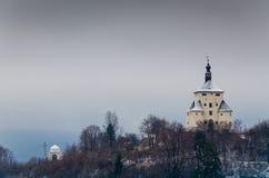 Ny slott Royaltyfri Foto