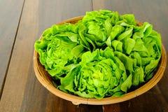 Ny smörhuvudgrönsak royaltyfri fotografi
