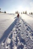 Ny snö fotografering för bildbyråer