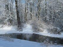 Ny snö och floden Arkivbilder