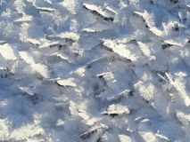 Ny snö på iskristaller Royaltyfria Foton