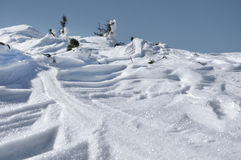 Ny snöcloseup Royaltyfri Bild